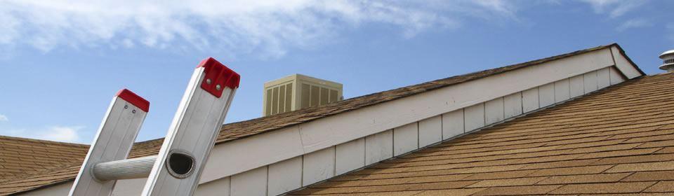 dakbedekking plaatsen in Sittard